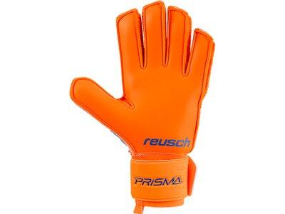 REUSCH Herren Handschuhe Prisma SG Extra Blau