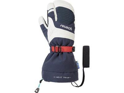 Reusch Skihandschuhe Herren Ndurance R-TEX® XT Lobster Grau