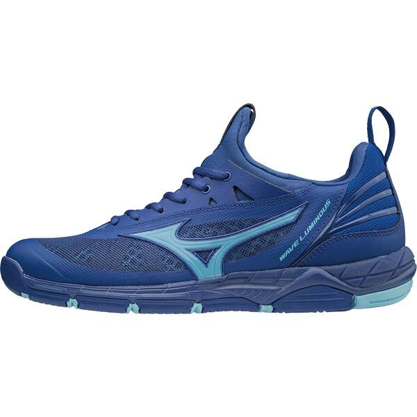 MIZUNO Herren Volleyballschuhe WAVE LUMINOUS