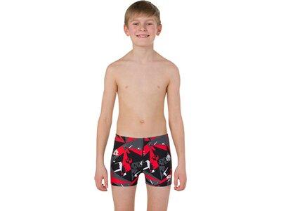 SPEEDO Kinder Badeanzug ALV ASHT JM BLACK/GREY Braun