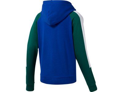 REEBOK Damen Sweatshirt WOR Colorblocked Coverup Blau