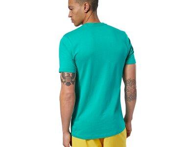 REEBOK Herren Shirt RC Funky Flamingo Blau