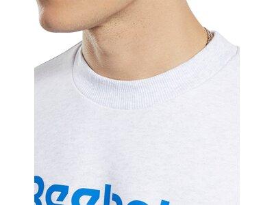 REEBOK Herren Sweatshirt Classics Vector Crew Grau