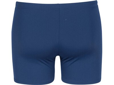 ARENA Herren Badeshorts Dongle Blau