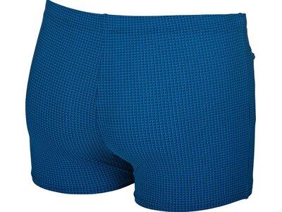 ARENA Herren Badeshorts Microprinted Blau