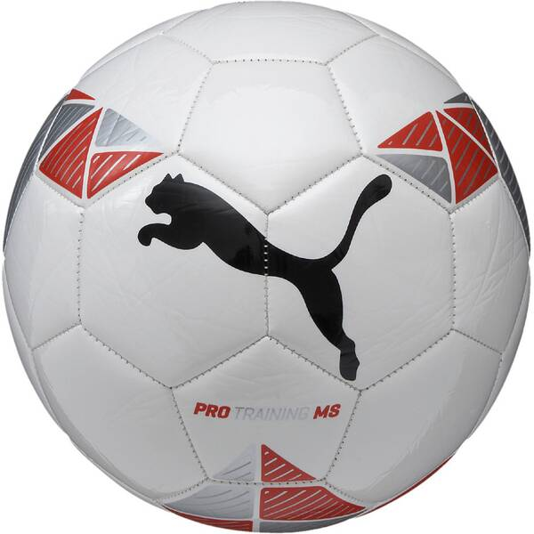PUMA Ball Pro Training MS ball