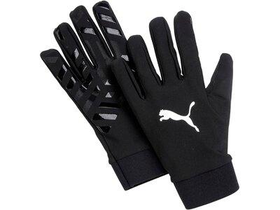 PUMA Feldspieler-Handschuhe Field Player Glove Schwarz