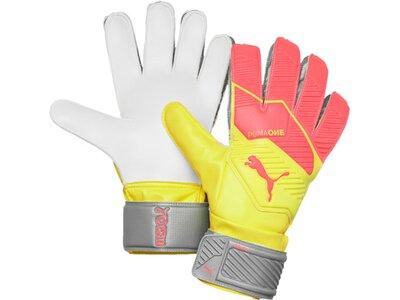 PUMA Herren Handschuhe One Grip 4 RC Silber