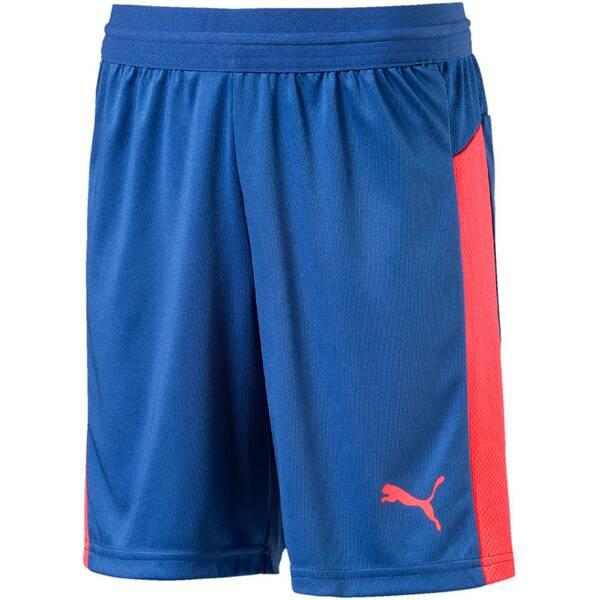 PUMA Kinder Shorts IT evoTRG Blau