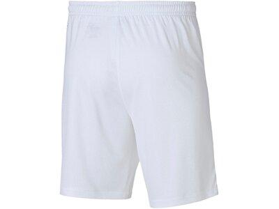 PUMA Kinder Fußballshorts Velize Shorts w/o innerslip Grau