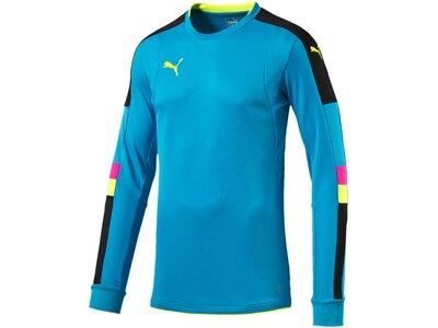 Puma Herren Fußballtrikot Tournament GK Shirt Blau