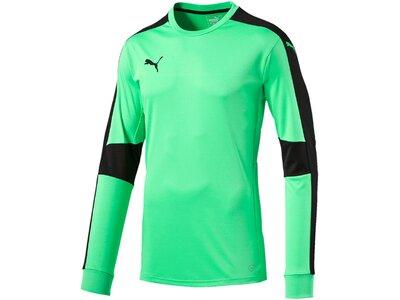 Puma Herren Fußballtrikot Triumphant GK Shirt Blau