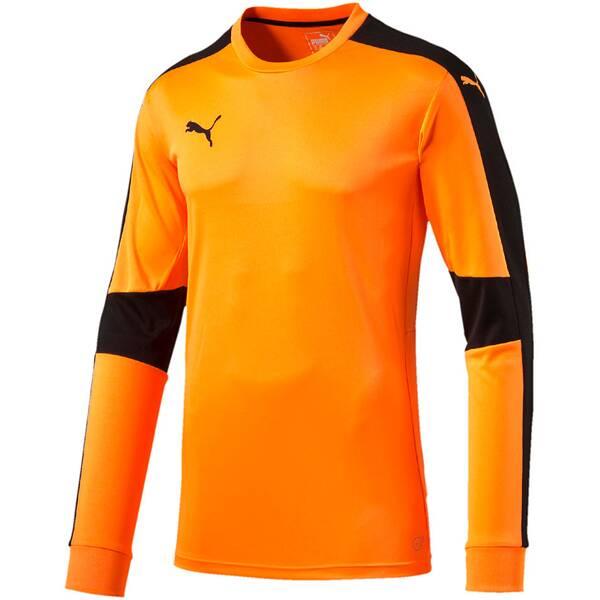 Puma Herren Fußballtrikot Triumphant GK Shirt