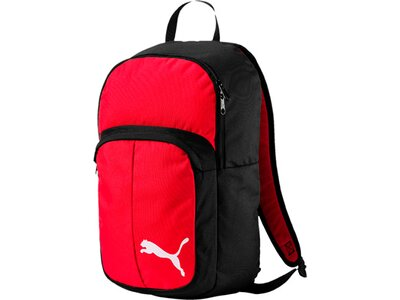 PUMA Sporttasche Pro Training II Backpack Schwarz