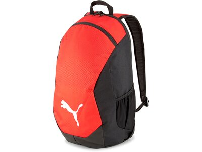 PUMA teamFINAL 21 Backpack Rot