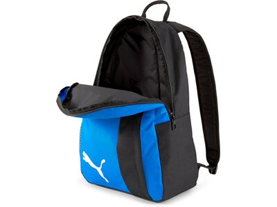 PUMA teamGOAL 23 Backpack Blau