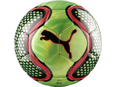 Puma Fußball FUTURE Grün
