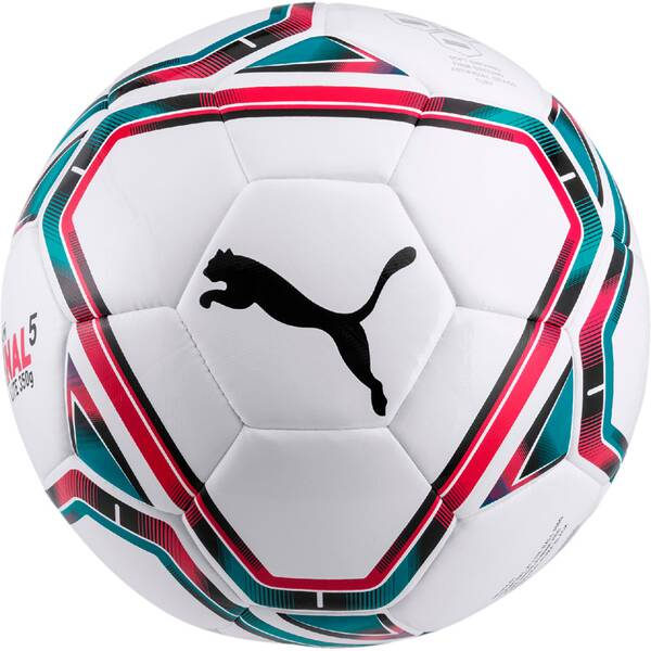 PUMA teamFINAL 21 Lite Ball 350