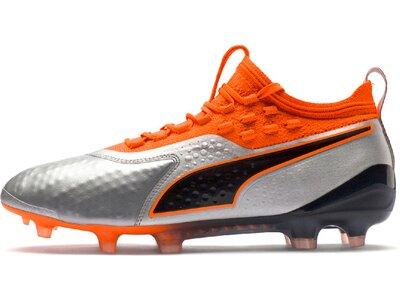 PUMA Fußball - Schuhe - Nocken ONE 1 Leder FG/AG Grau