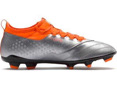 PUMA Fußball - Schuhe - Nocken ONE 3 Leder FG Grau