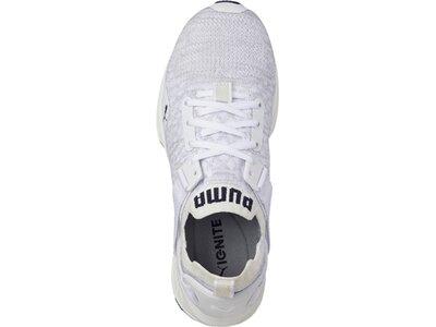 PUMA Damen Sneaker IGNITE evoKNIT Lo Grau