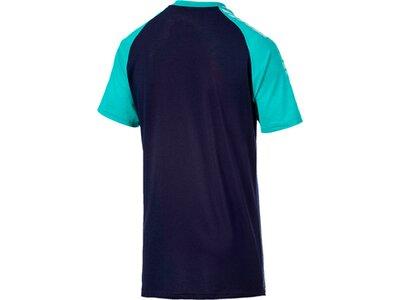 PUMA Herren T-Shirt Collective Raglan Tee Schwarz