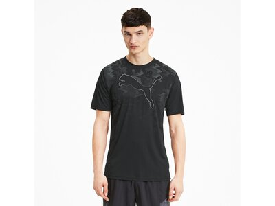 PUMA Herren Shirt Run Graphic Cat SS Schwarz