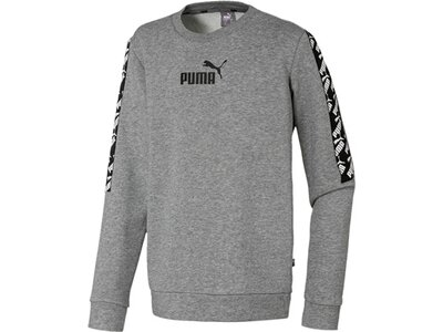 PUMA Kinder Sweatshirt Amplified Crew TR B Grau