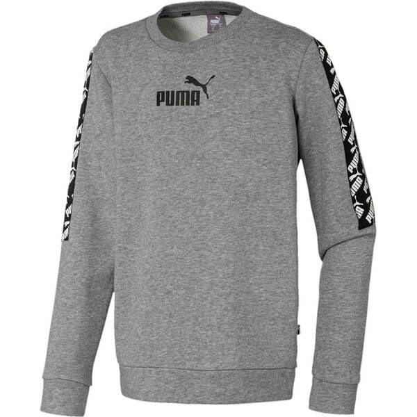 PUMA Kinder Sweatshirt Amplified Crew TR B