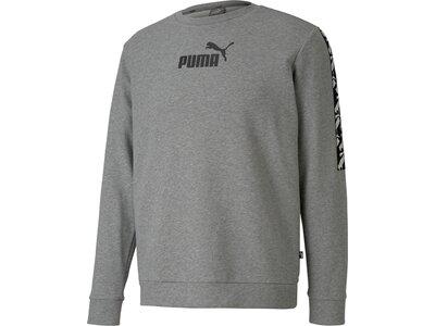 PUMA Herren Sweatshirt AMPLIFIED Grau