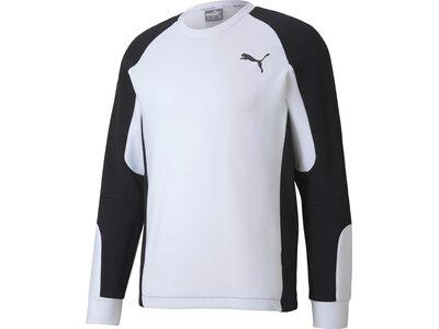 PUMA Lifestyle - Textilien - Sweatshirts Evostripe Crew Sweatshirt Schwarz
