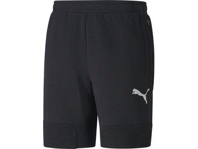PUMA Herren EVOSTRIPE Shorts 8 Schwarz