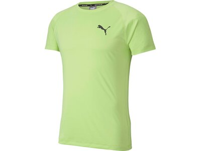 PUMA Herren Shirt RTG Grün
