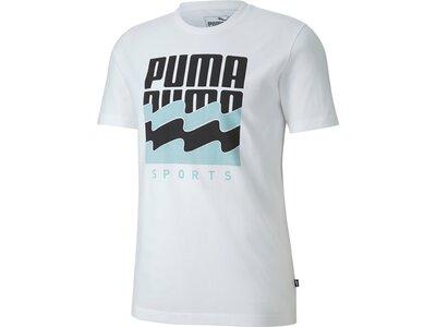 PUMA Herren Shirt Summer Graphic Grau