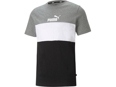 PUMA Herren Shirt ESS Colorblock Tee Grau