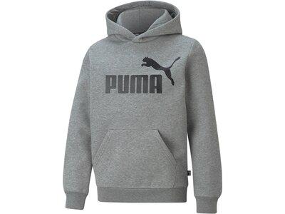 PUMA Kinder Sweatshirt ESS Big Logo Hoodie FL B Grau