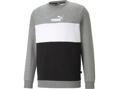 PUMA Herren Sweatshirt ESS Colorblock Crew FL Grau