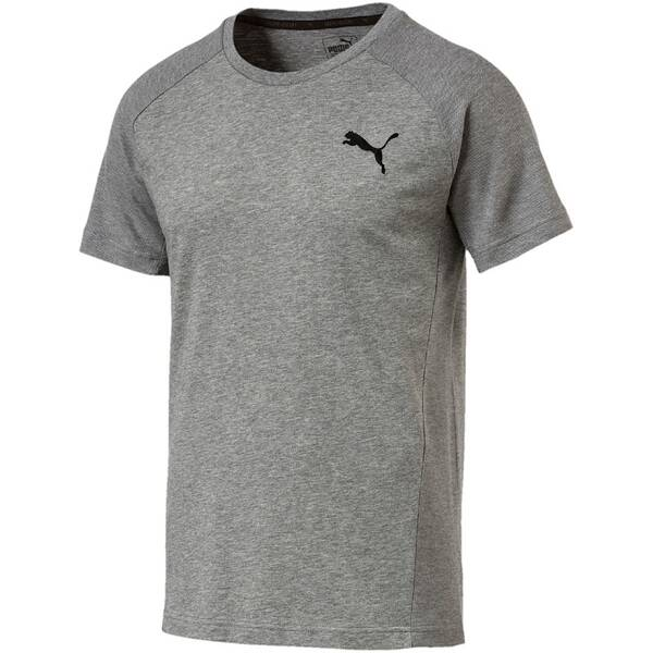 Puma Herren T-Shirt Evostripe Move Tee Grau