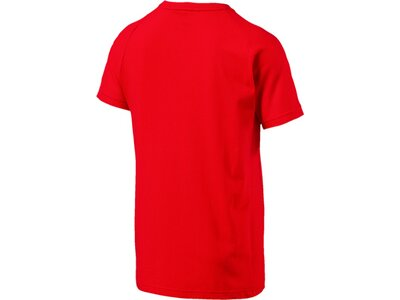 Puma Herren T-Shirt Evostripe Move Tee Rot