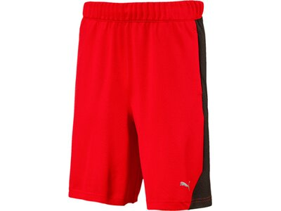 Puma Kinder Shorts Gym Shorts Rot