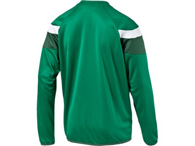 Puma Herren Sweatshirt Spirit II Training Sweat Grün