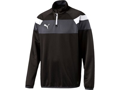 Puma Herren Shirt Spirit II 1/4 Zip Training Top Schwarz