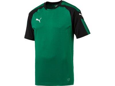 Puma Herren Shirt Ascension Training Jersey Blau