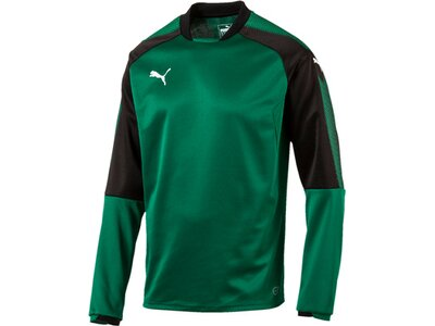 Puma Herren Sweatshirt Ascension Training Sweat Grün