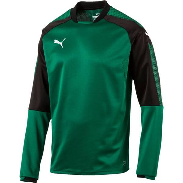 Puma Herren Sweatshirt Ascension Training Sweat