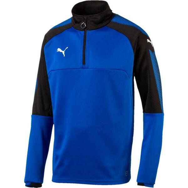 Puma Herren Sweatshirt Ascension 1/4 Zip Training Top