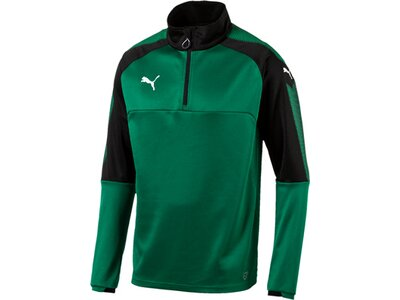 Puma Herren Sweatshirt Ascension 1/4 Zip Training Top Grün