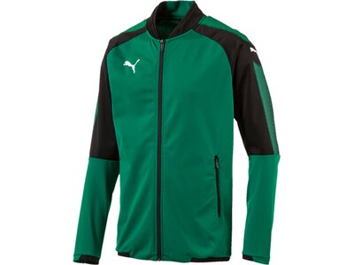 Puma Herren Jacke Ascension Stadium Jacket Blau