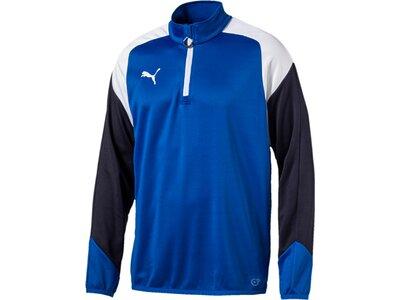 Puma Herren Shirt Esito 4 1/4 Zip Training Top Blau