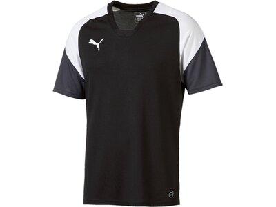 Puma Herren Shirt Esito 4 Training Jersey Schwarz